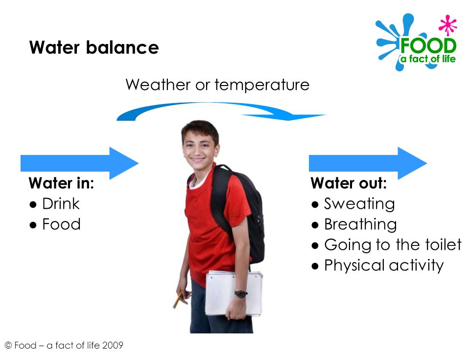 © Food – a fact of life 2009 Water balance Water in:Water out: Drink Sweating Food Breathing Going to the toilet Physical activity Weather or temperat