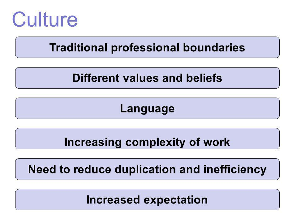 Culture Traditional professional boundaries Different values and beliefs Language Increasing complexity of work Need to reduce duplication and ineffic
