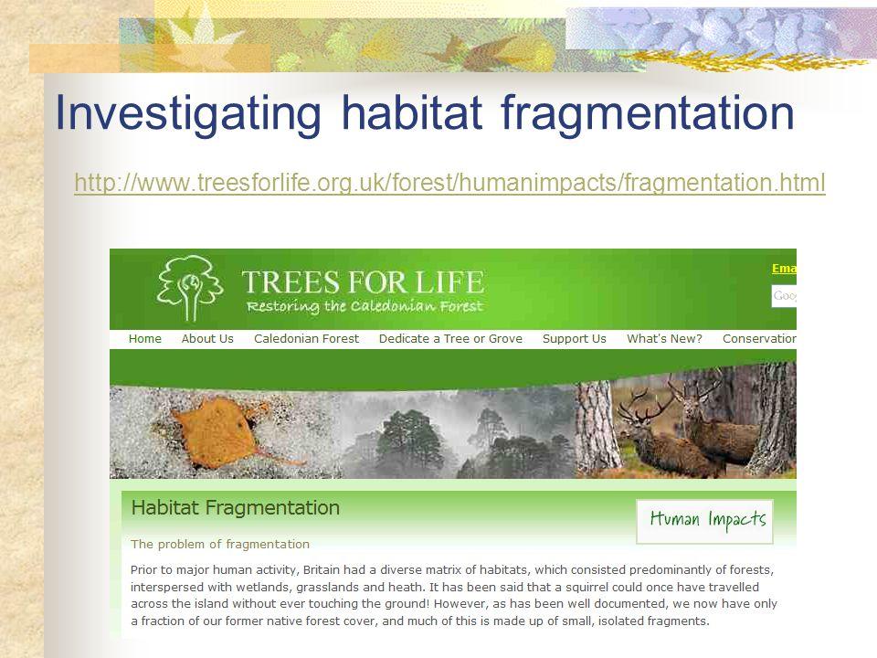 Investigating habitat fragmentation http://www.treesforlife.org.uk/forest/humanimpacts/fragmentation.html