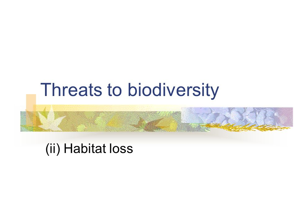 Threats to biodiversity (ii) Habitat loss