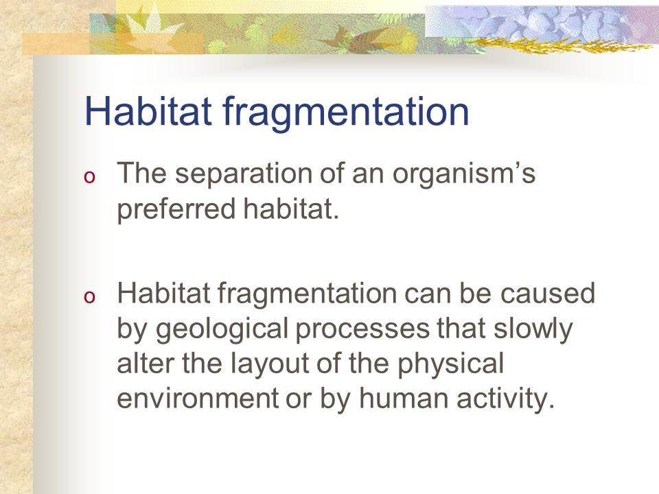 Habitat fragmentation o The separation of an organisms preferred habitat. o Habitat fragmentation can be caused by geological processes that slowly al
