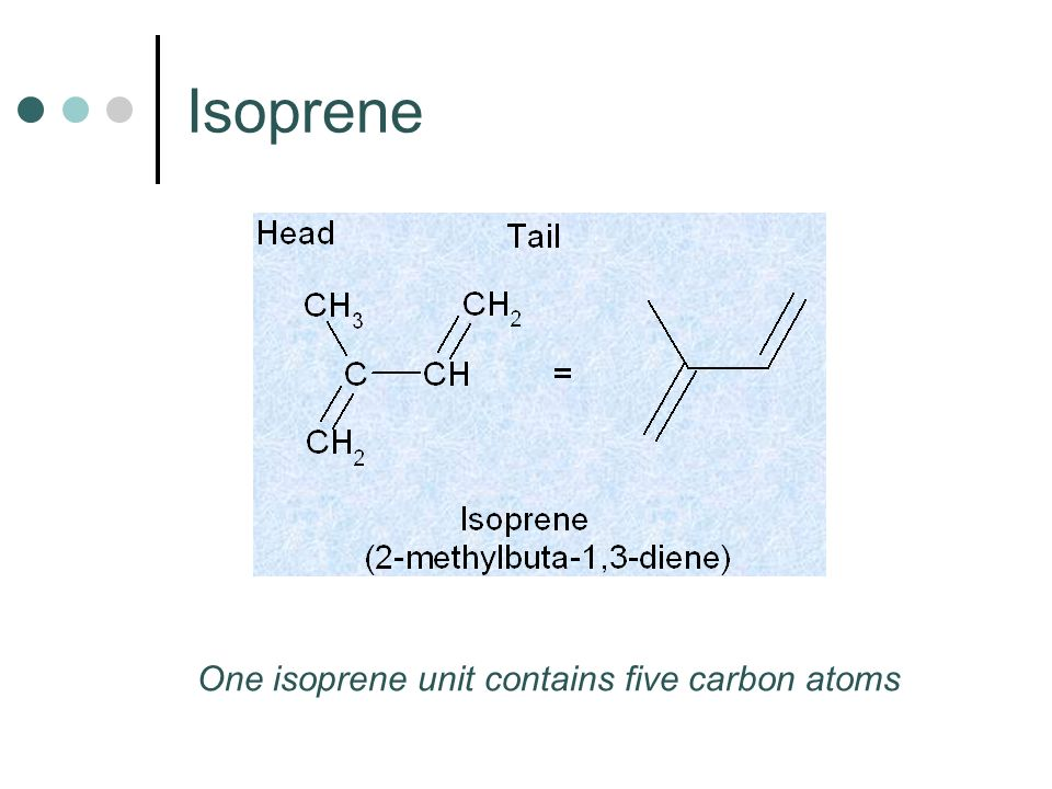 Isoprene One isoprene unit contains five carbon atoms
