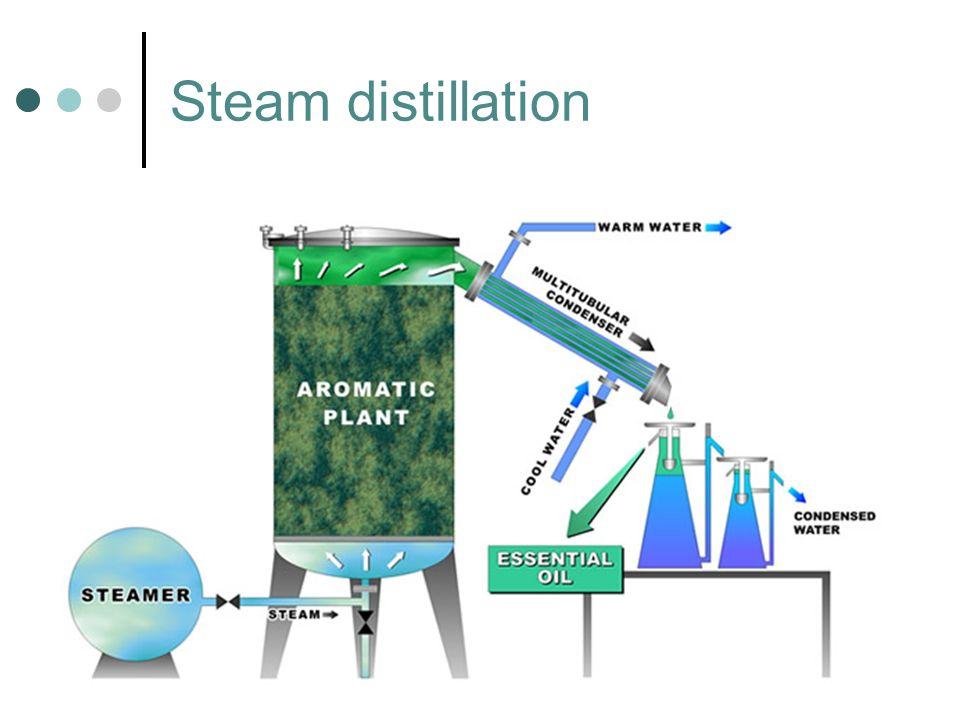 Steam distillation