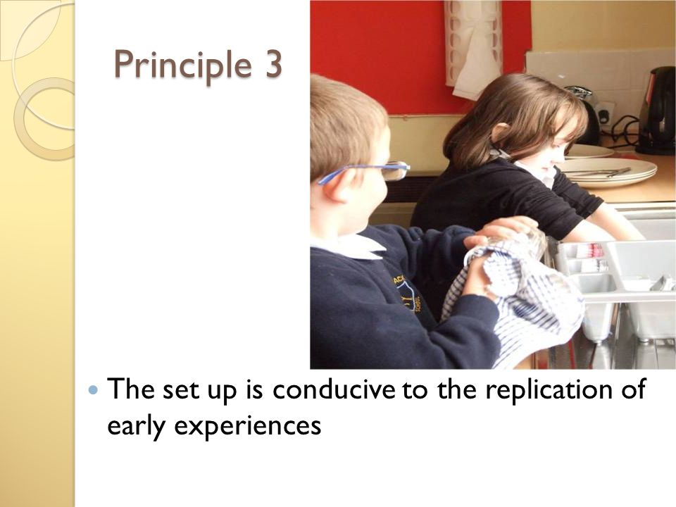 Principle 3 The set up is conducive to the replication of early experiences