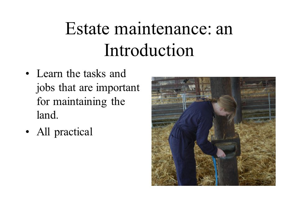 Estate maintenance: an Introduction Learn the tasks and jobs that are important for maintaining the land.