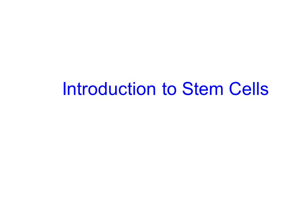 What is a stem cell.Master cell. Undifferentiated (unspecialised cell type).
