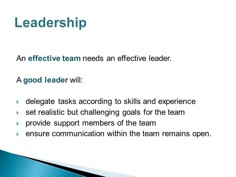 An effective team needs an effective leader.
