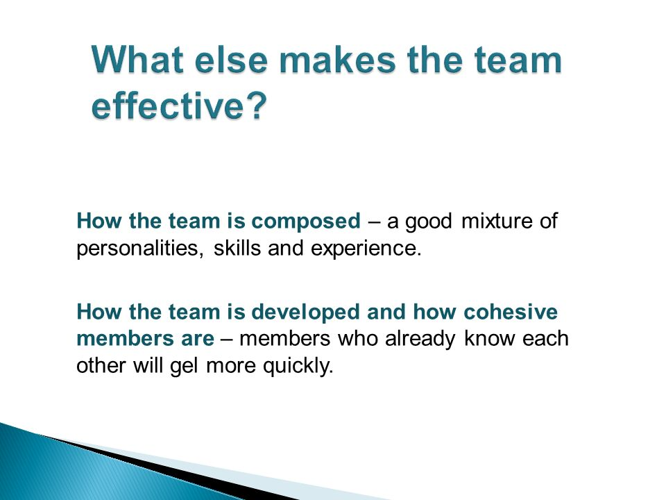 How the team is composed – a good mixture of personalities, skills and experience.
