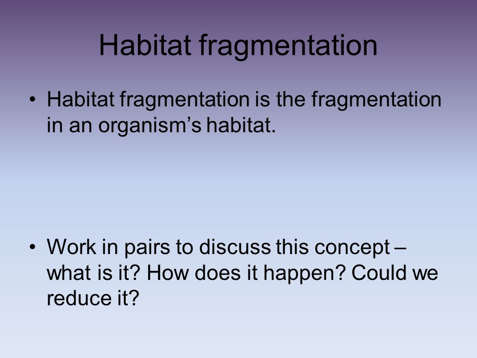 Habitat fragmentation Habitat fragmentation is the fragmentation in an organisms habitat. Work in pairs to discuss this concept – what is it? How does