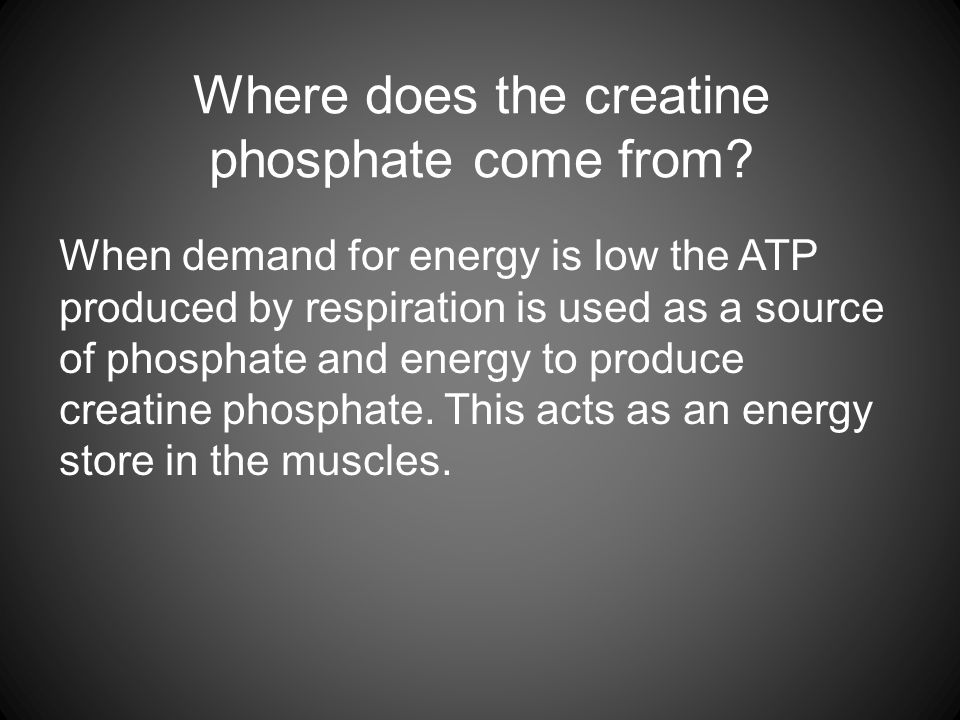 Where does the creatine phosphate come from.