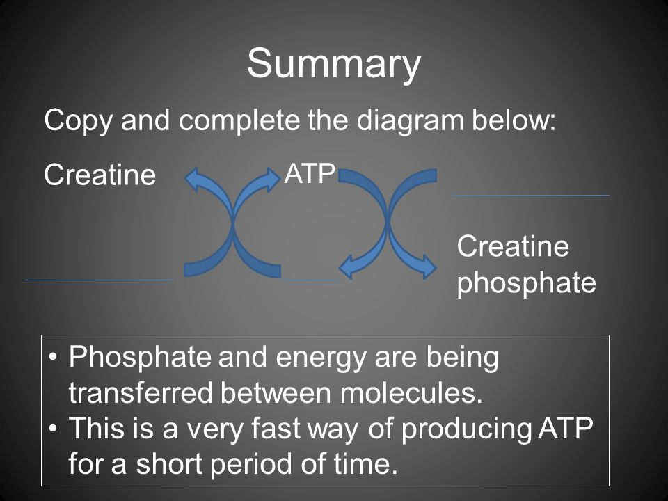Summary Copy and complete the diagram below: ATP Creatine Creatine phosphate Phosphate and energy are being transferred between molecules.