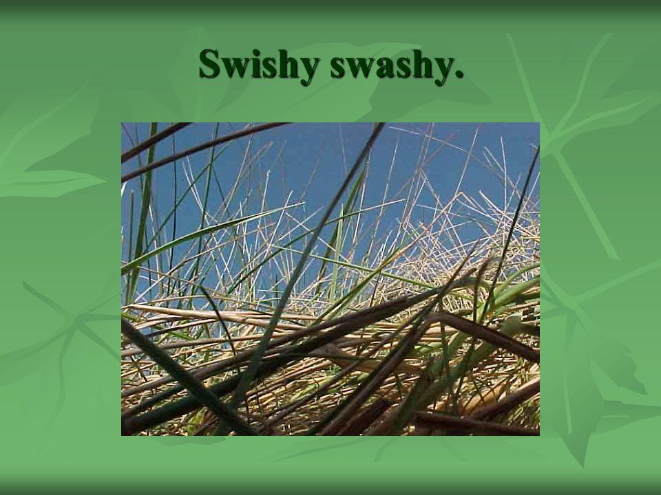 Swishy swashy.