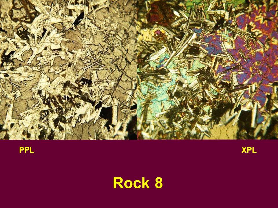 PPLXPL Rock 8