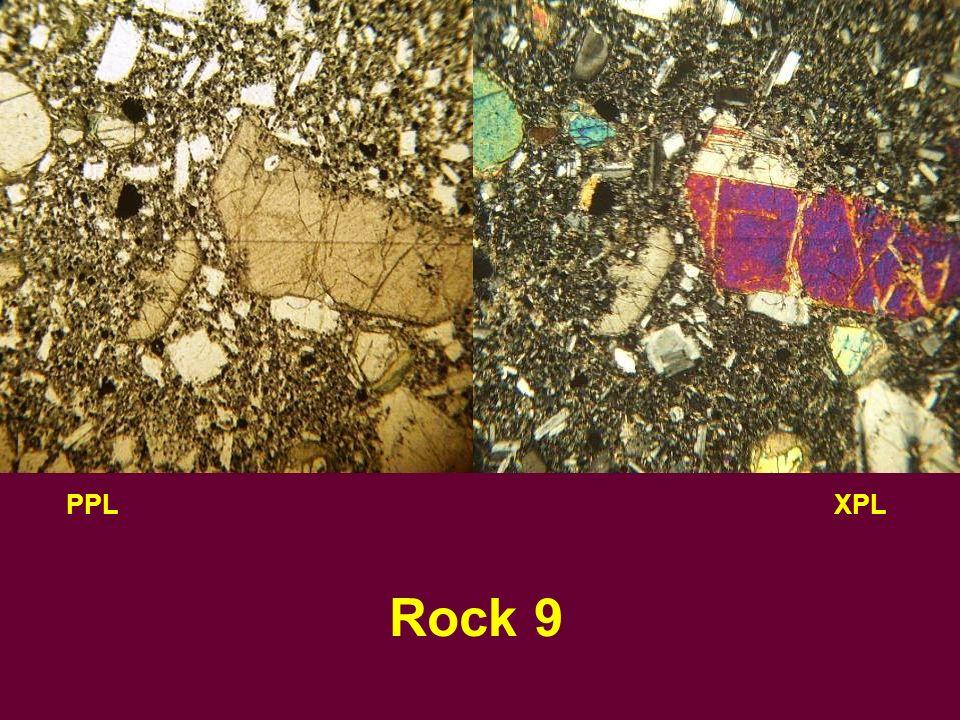 PPLXPL Rock 9