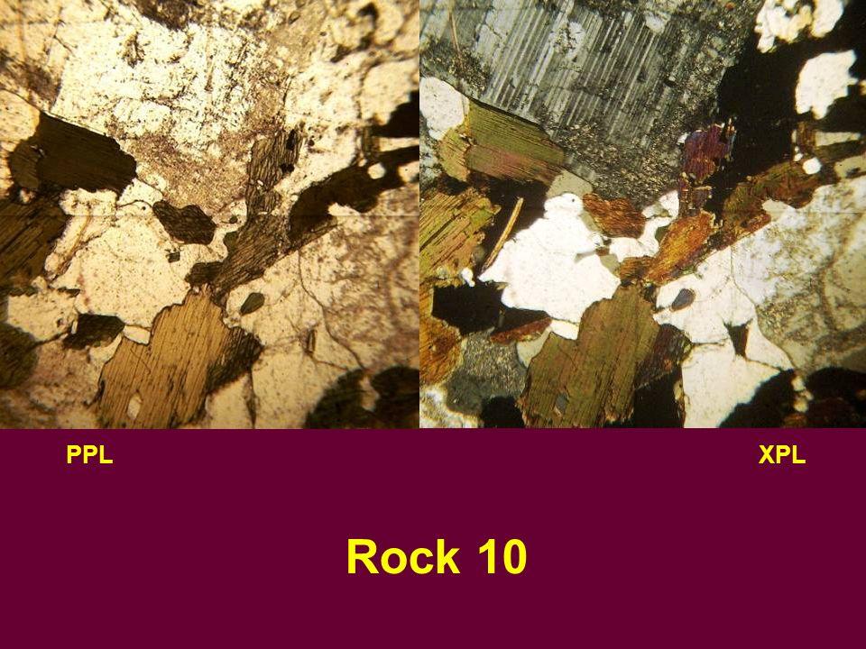 PPLXPL Rock 10