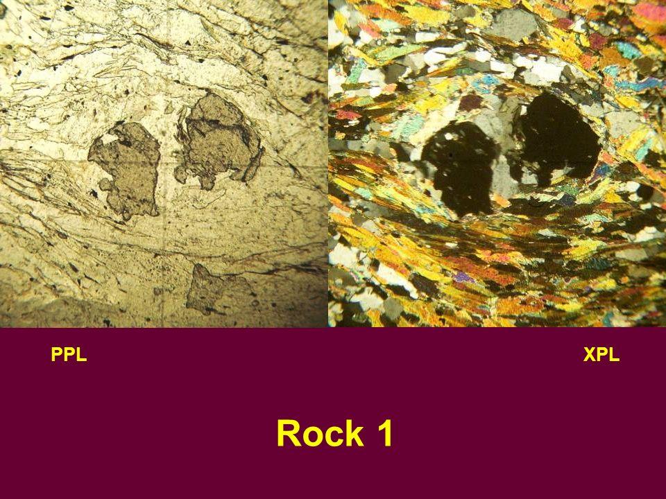 PPLXPL Rock 2