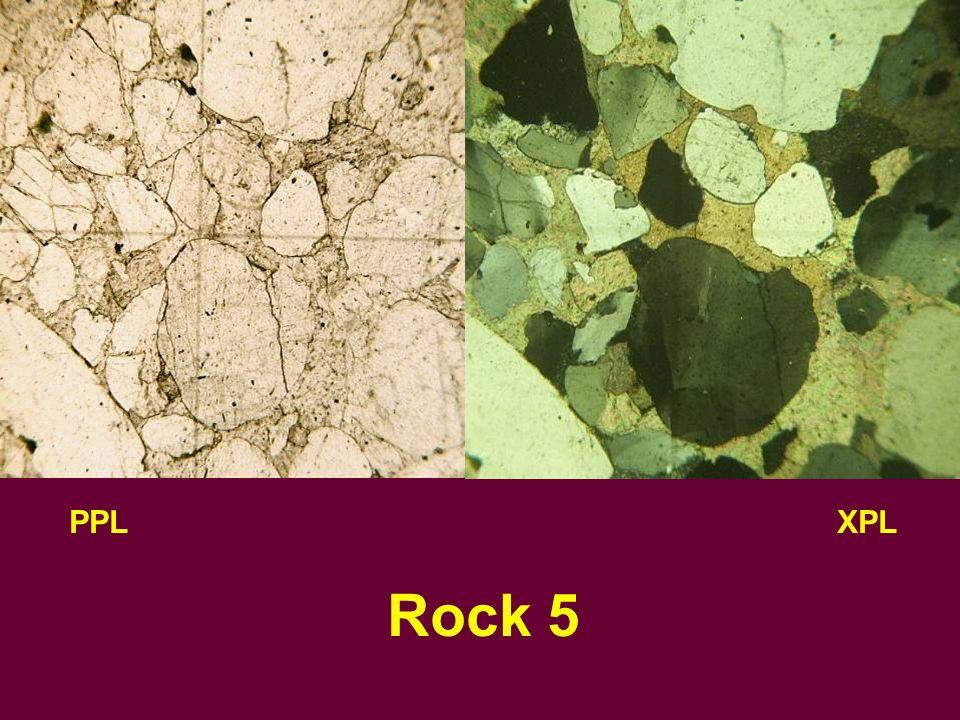 PPLXPL Rock 5