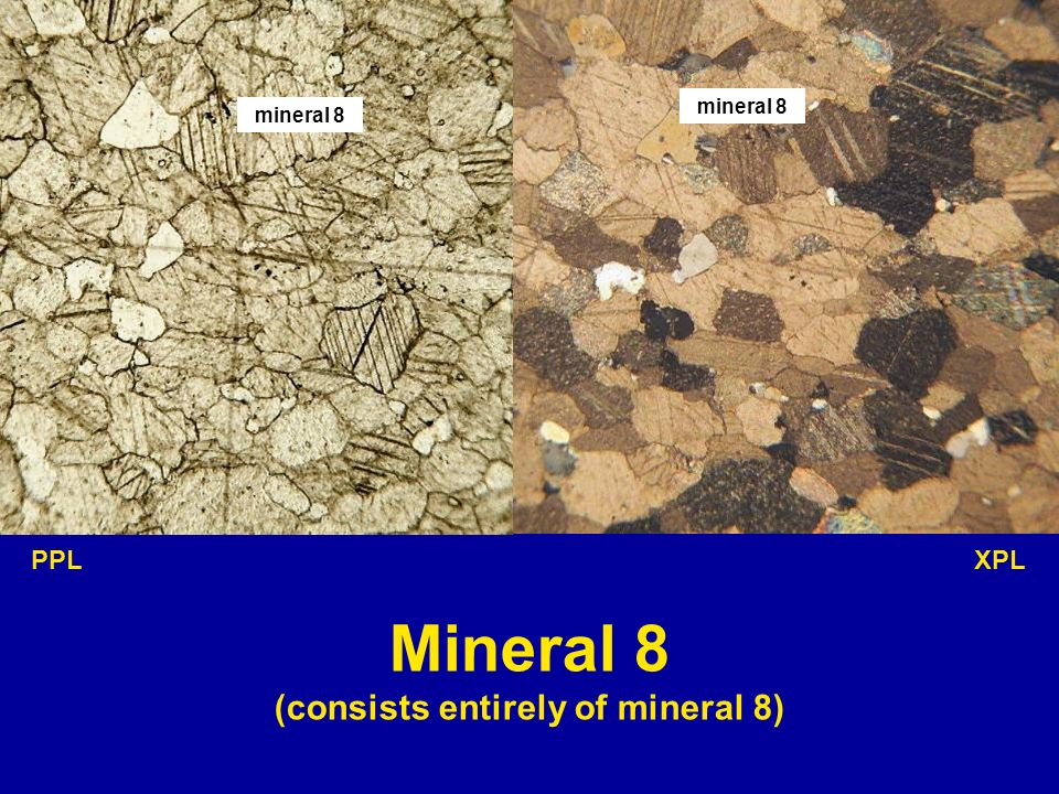 mineral 8 PPL XPL Mineral 8 (consists entirely of mineral 8)