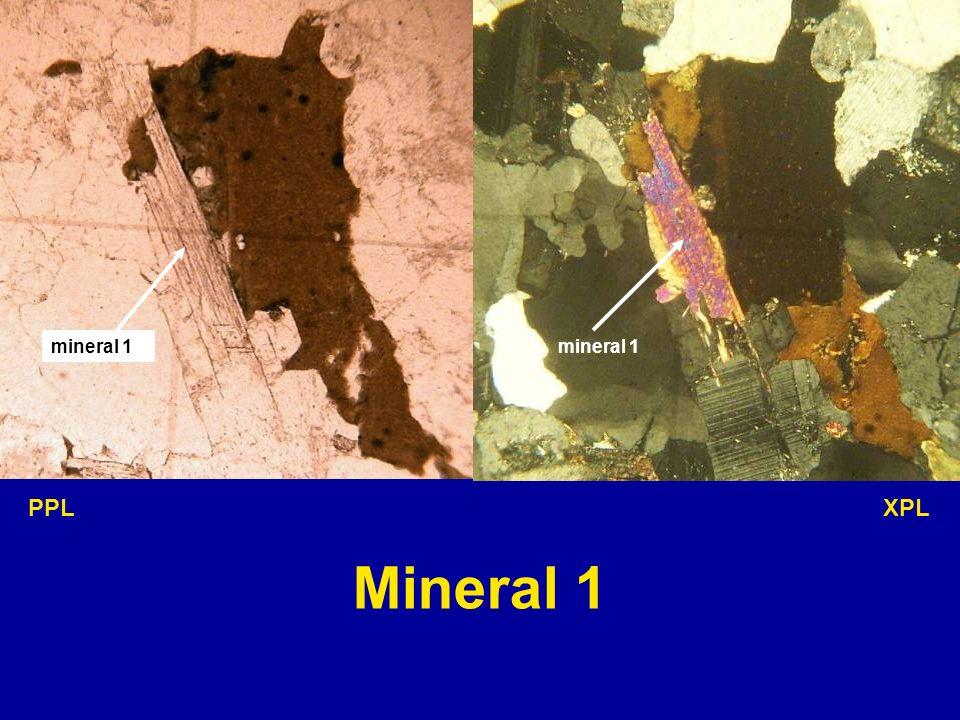 mineral 1 PPL XPL Mineral 1