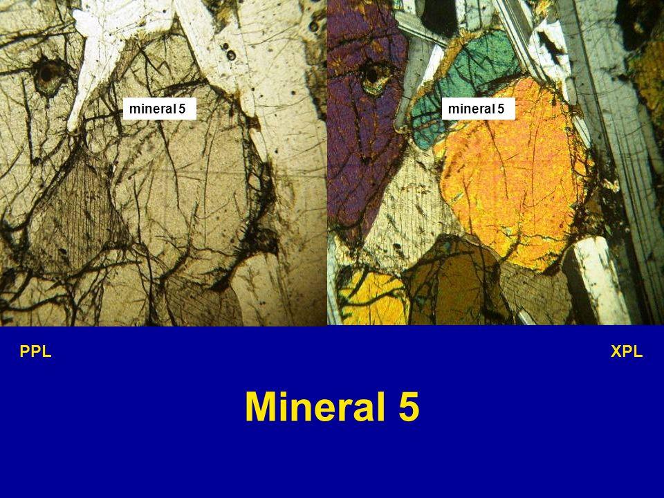 mineral 5 PPL XPL Mineral 5