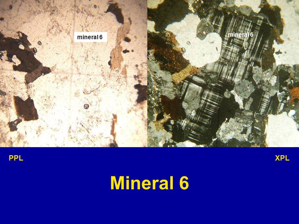 mineral 6 PPL XPL Mineral 6