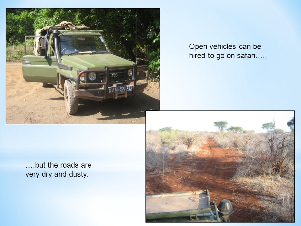 Open vehicles can be hired to go on safari….. ….but the roads are very dry and dusty.