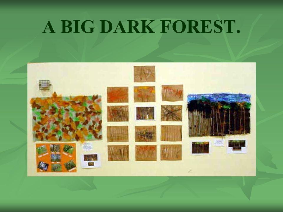 A BIG DARK FOREST.