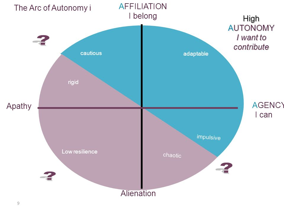 10 AFFILIATION I belong AGENCY I can AUTONOMY I want to contribute The Learner Needs & toxins Alienation Apathy Anxiety Restricted autonomy Distorted autonomy Acquiescence Anger Crushedautonomy