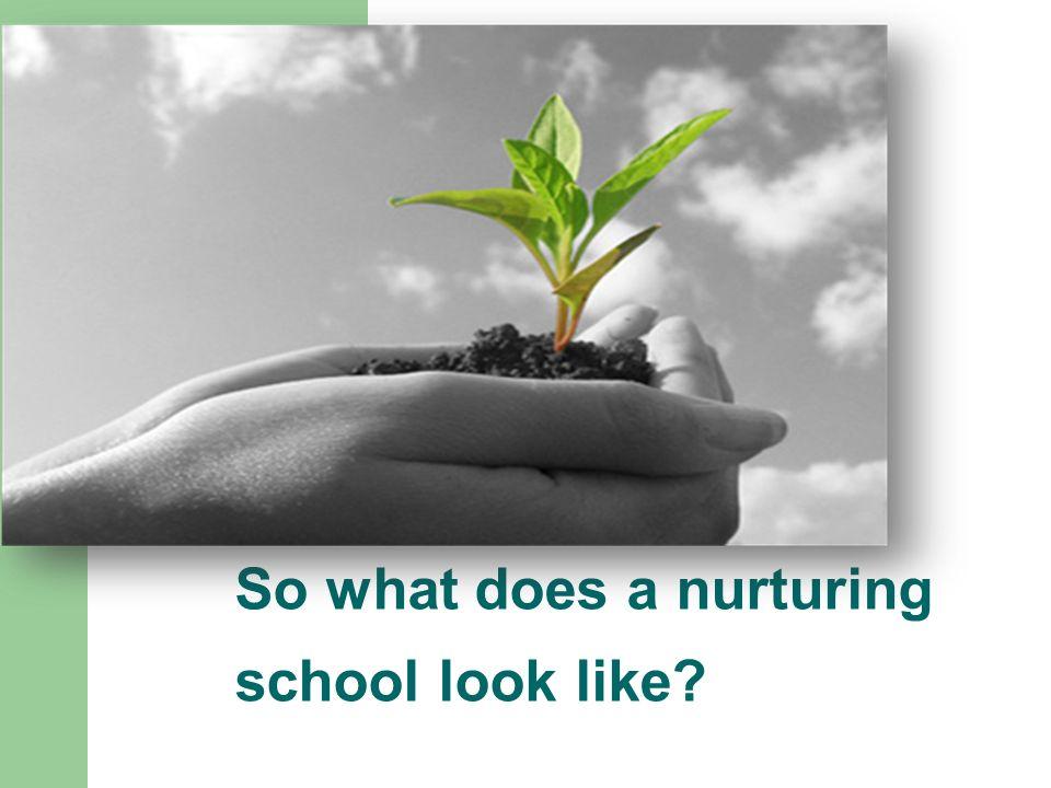 So what does a nurturing school look like?