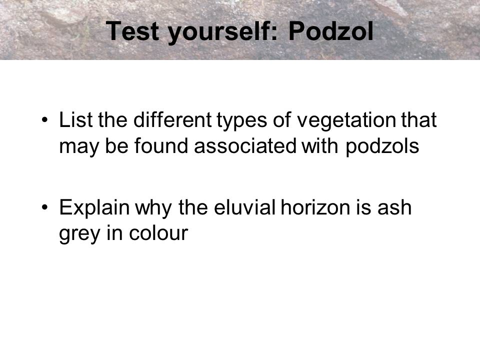 Test yourself: Podzol List the different types of vegetation that may be found associated with podzols Explain why the eluvial horizon is ash grey in
