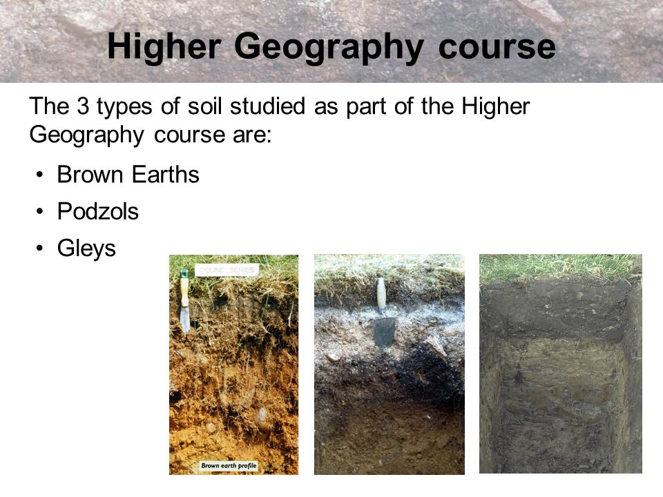 The 3 types of soil studied as part of the Higher Geography course are: Higher Geography course Gleys Podzols Brown Earths