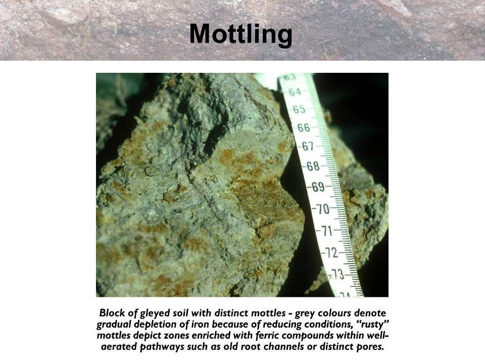 Mottling