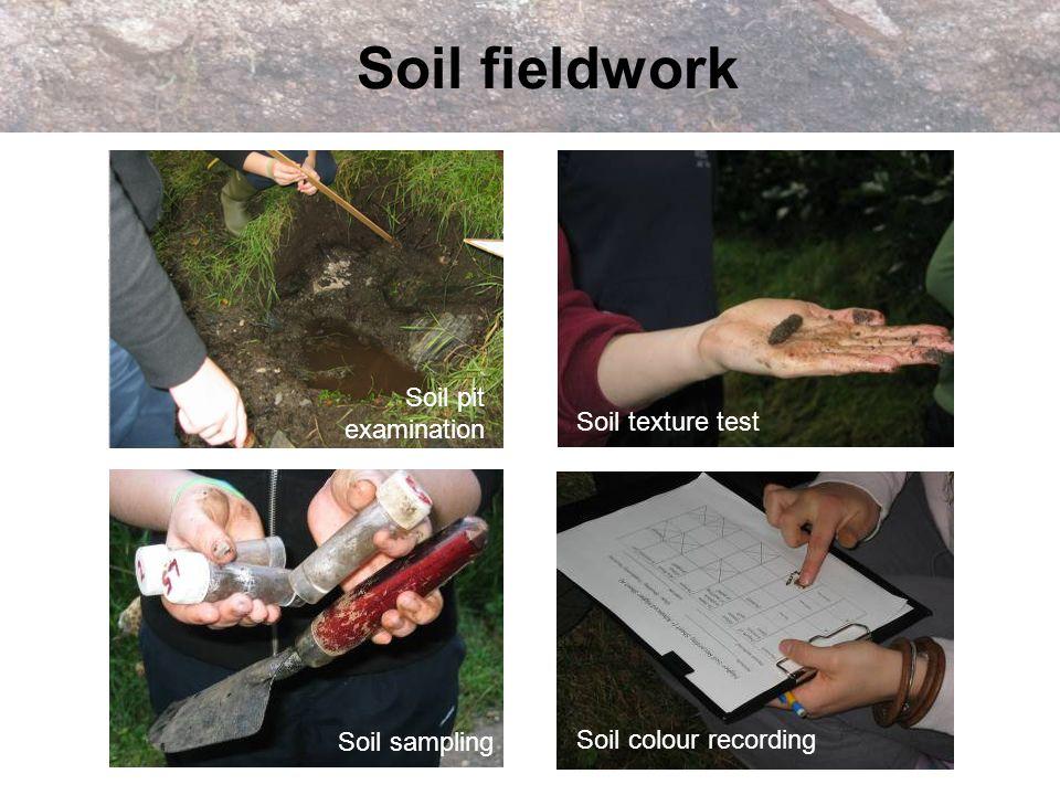 Soil fieldwork Soil pit examination Soil texture test Soil colour recording Soil sampling