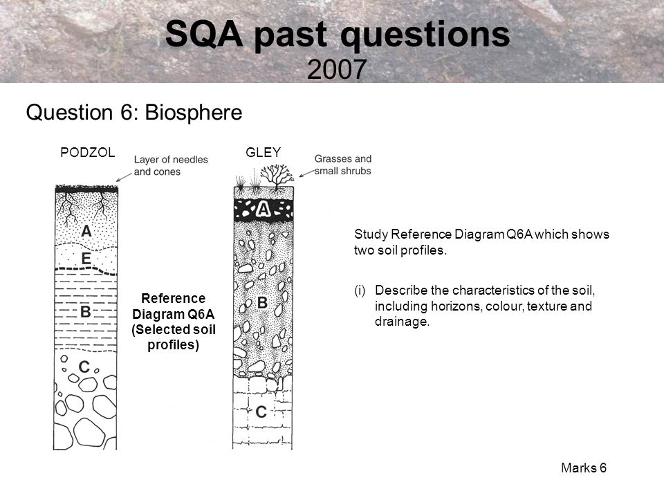Question 6: Biosphere (i)Describe the characteristics of the soil, including horizons, colour, texture and drainage. SQA past questions 2007 Study Ref