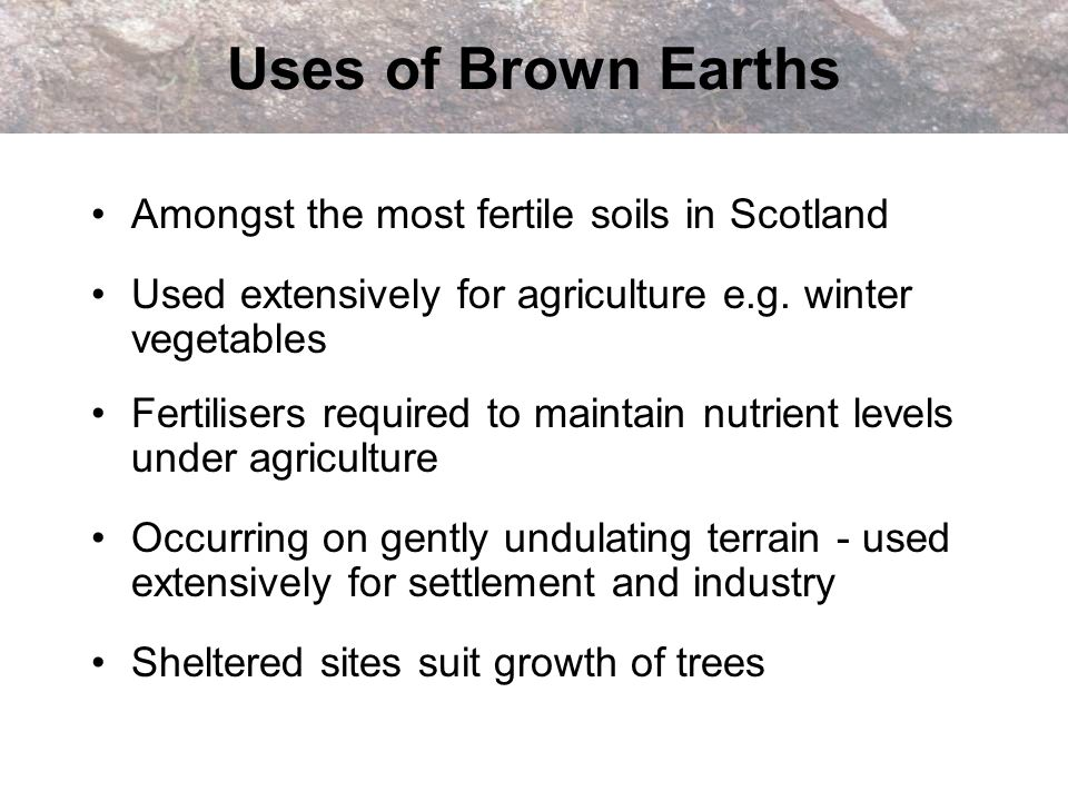 Test yourself: Brown Earths Write down 3 characteristics of a brown earth Draw a sketch profile of a brown earth labelling the different horizons with the correct letters