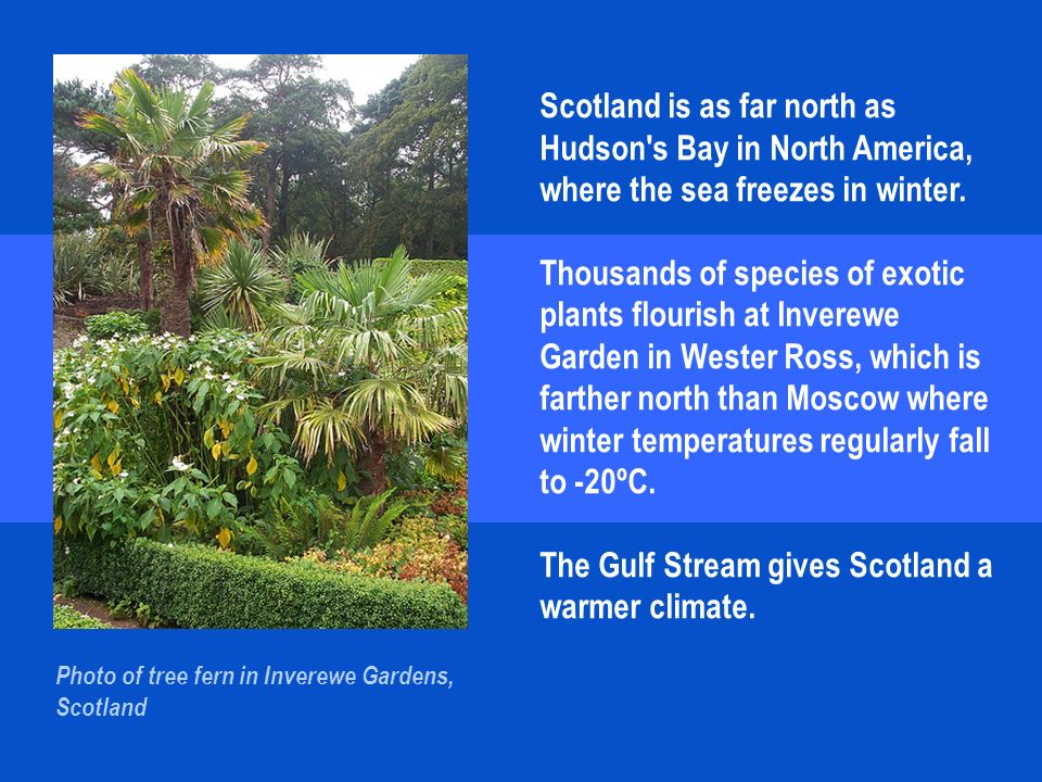 Scotland is as far north as Hudson s Bay in North America, where the sea freezes in winter.
