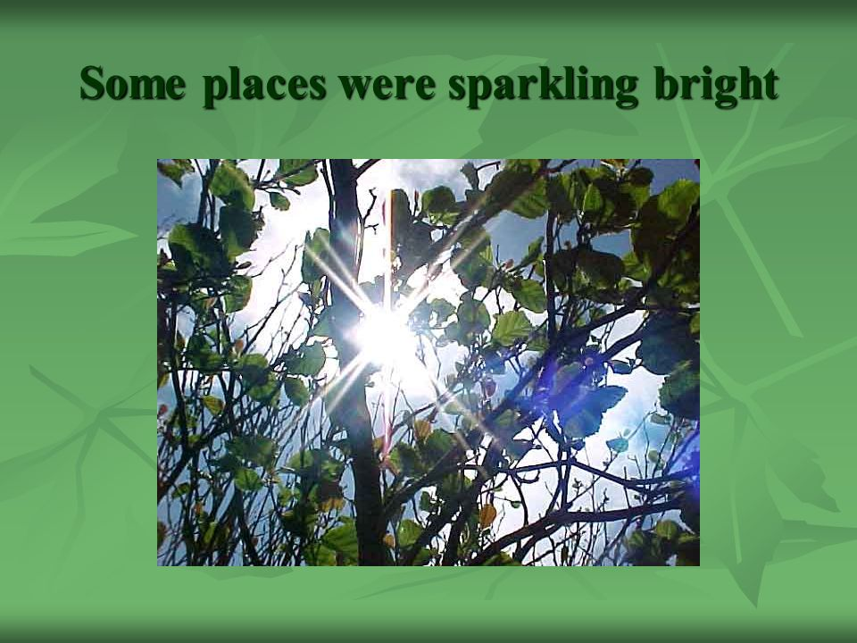 Some places were sparkling bright