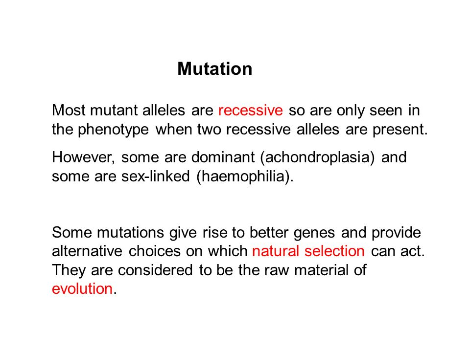 Most mutant alleles are recessive so are only seen in the phenotype when two recessive alleles are present. However, some are dominant (achondroplasia