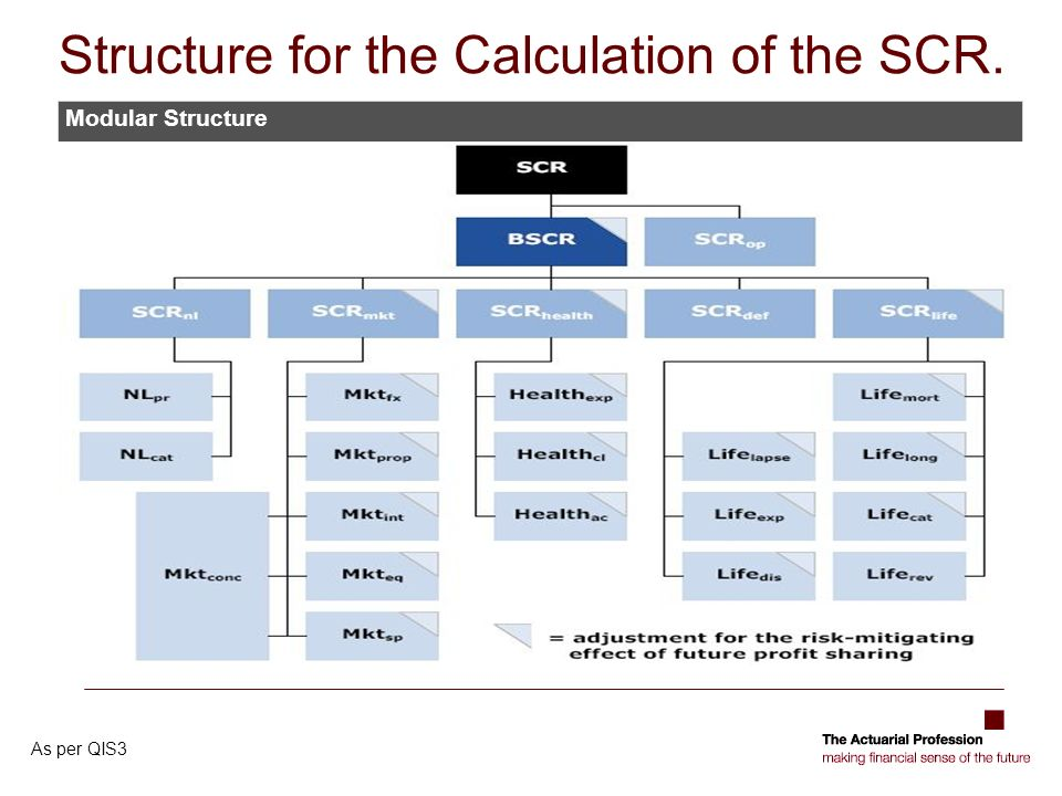 Structure for the Calculation of the SCR. Modular Structure As per QIS3