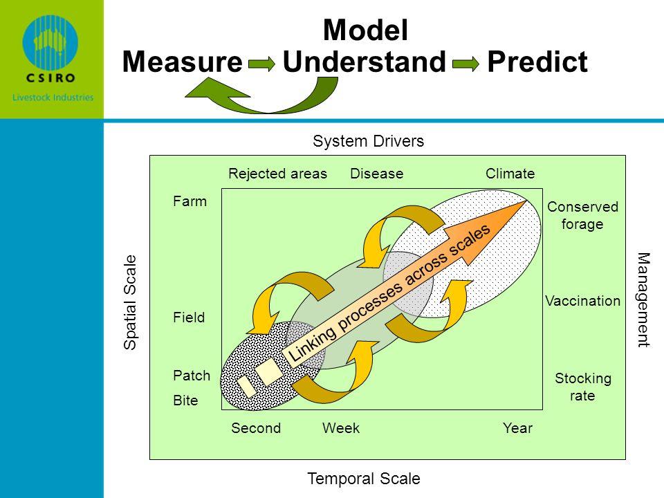 BackgroundBackground Summary of spatial grazing modelSummary of spatial grazing model Experimental methodsExperimental methods Linking model and experimental data to estimate grazing parametersLinking model and experimental data to estimate grazing parameters Where next?Where next.