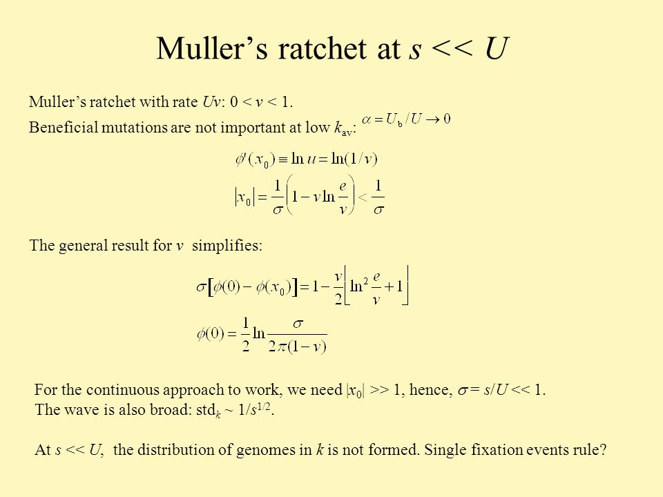 Mullers ratchet at s << U Mullers ratchet with rate Uv: 0 < v < 1.