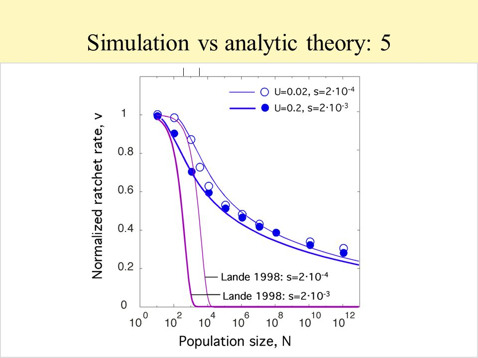 Simulation vs analytic theory: 5