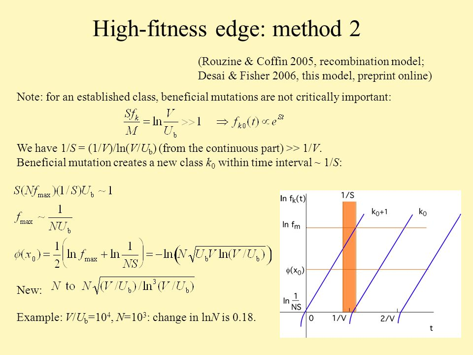 High-fitness edge: method 2 Note: for an established class, beneficial mutations are not critically important: We have 1/S = (1/V)/ln(V/U b ) (from the continuous part) >> 1/V.