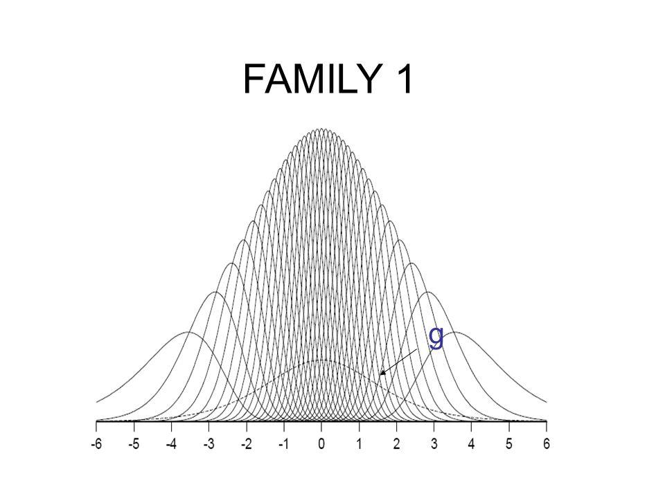 FAMILY 1 g