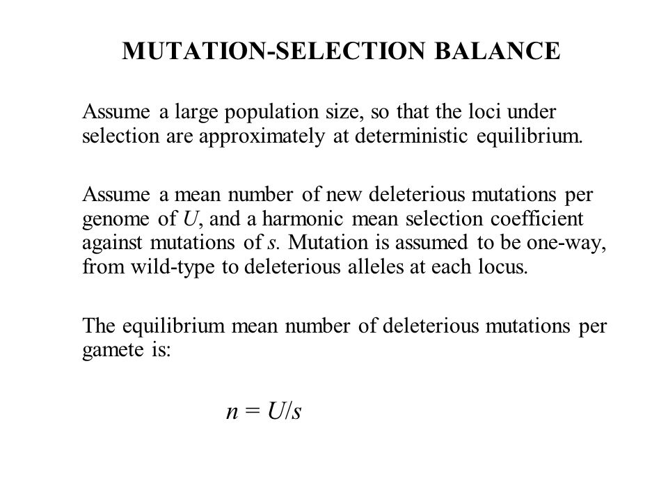 MUTATION-SELECTION BALANCE Assume a large population size, so that the loci under selection are approximately at deterministic equilibrium. Assume a m