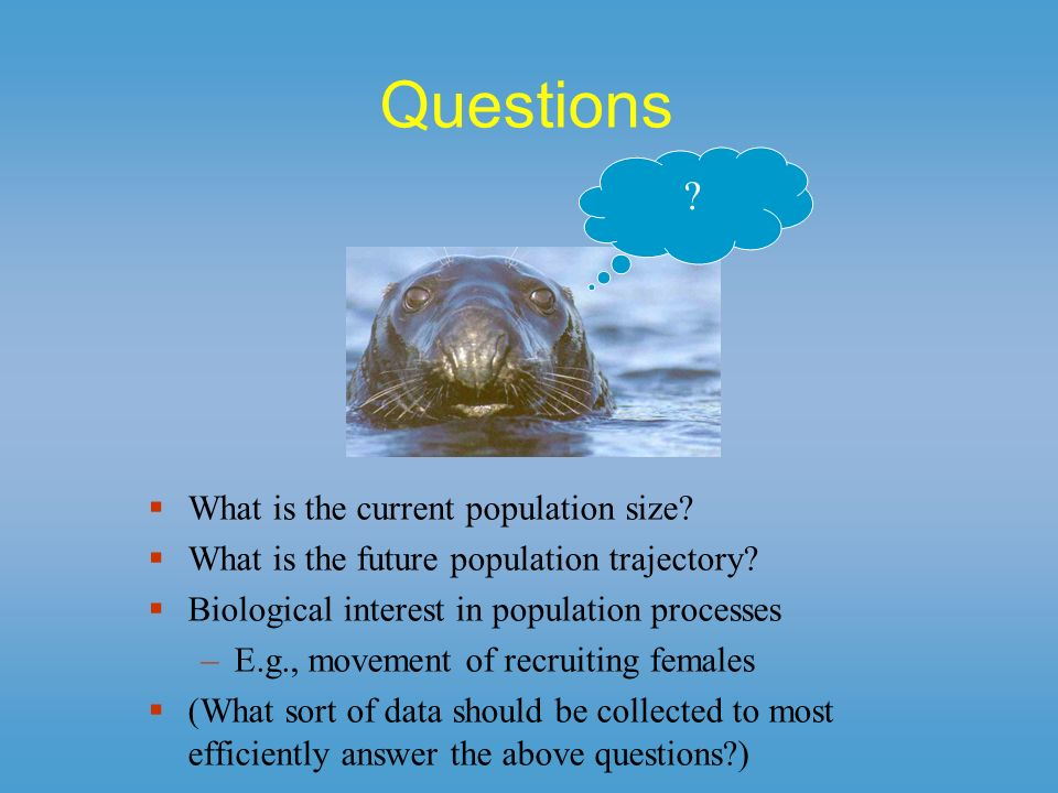 Questions What is the current population size? What is the future population trajectory? Biological interest in population processes –E.g., movement o