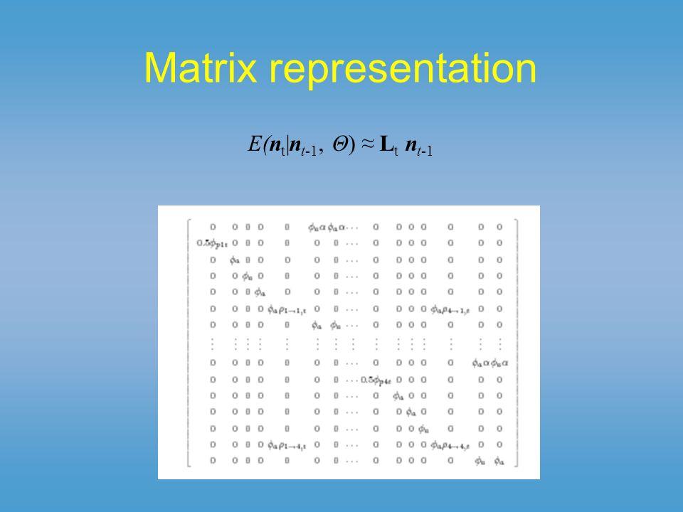 Matrix representation E(n t |n t-1, Θ) L t n t-1