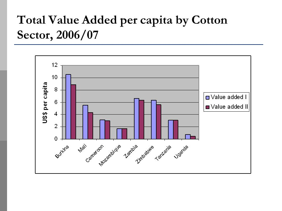 Total Value Added per capita by Cotton Sector, 2006/07
