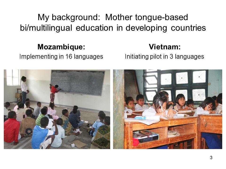 Inspiration… Hornberger, Nancy (ed) (2008) Can Schools Save Indigenous Languages.