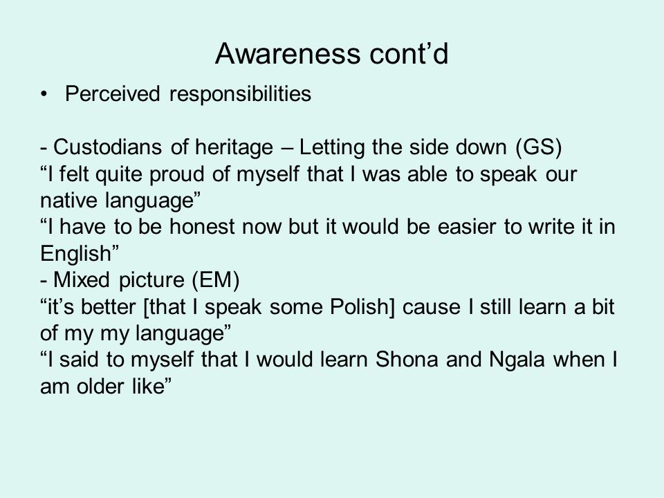 Awareness 1. of context/ social environment Language proficiency of parent(s) Learners individual position in group (common experience or all alone?)